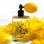Что представляет собой «нишевая парфюмерия»?