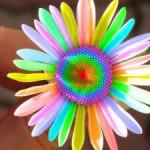 Как цвет изменяет нашу жизнь?