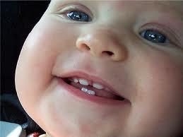 первые зубки у детей фото