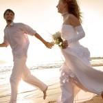 Лучшие свадебные платья ждут встречи со своими счастливыми избранницами